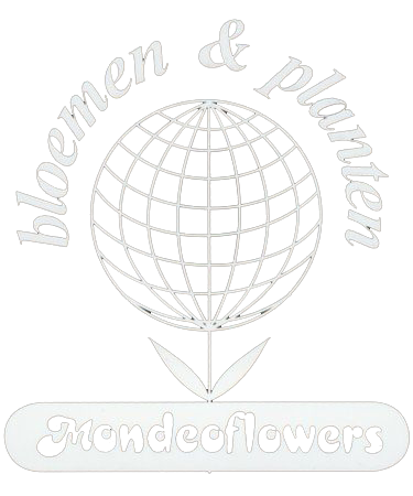Mondeoflowers